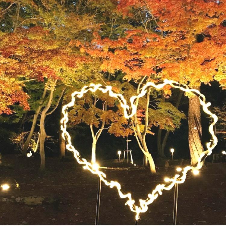 điểm ngắm lá đỏ đẹp ở Saitama