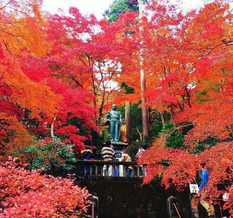 địa điểm ngắm lá đỏ ở saitama